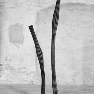 WINDY SPACEDREAMER, robinia, H 160 + 250 cm, 2014